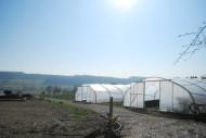 Le champ vierge est petit à petit investi par le projet de maraîchage