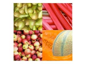 fruits.001