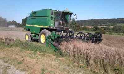 bientôt de la farine bio avec l'épautre des Pousses vertes?! affaire à suivre...!