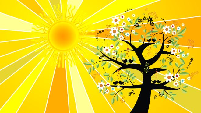 summer-solstice-2433807_960_720